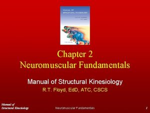 Chapter 2 Neuromuscular Fundamentals Manual of Structural Kinesiology