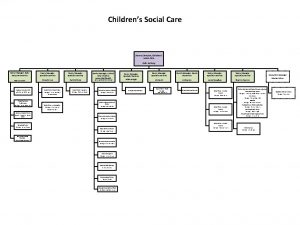Childrens Social Care Service Director Childrens Social Care