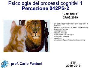 Psicologia dei processi cognitivi 1 Percezione 042 PS2