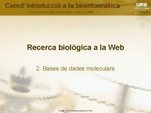 Recerca biolgica a la Web 2 Bases de