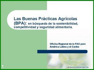 Las Buenas Prcticas Agrcolas BPA en bsqueda de