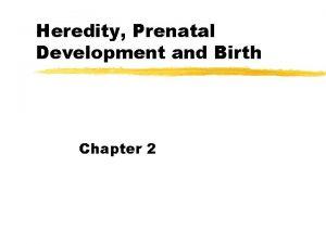 Heredity Prenatal Development and Birth Chapter 2 Mechanism
