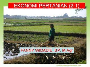 EKONOMI PERTANIAN 2 1 FANNY WIDADIE SP M