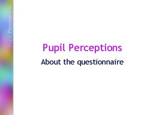 Pupil Perceptions About the questionnaire The questionnaire This