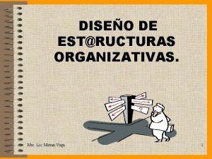 DISEO DE ESTRUCTURAS ORGANIZATIVAS Msc Lic Mirian Vega