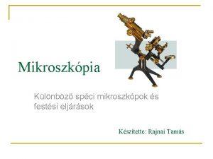 Mikroszkpia Klnbz spci mikroszkpok s festsi eljrsok Ksztette