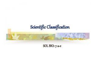Scientific Classification SOL BIO 7 ae SOL BIO