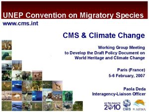 UNEP Convention on Migratory Species www cms int