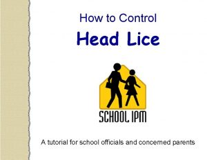How to Control Head Lice A tutorial for