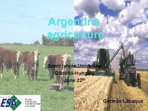 Argentine agriculture Szent Istvn University GdllHungary June 22