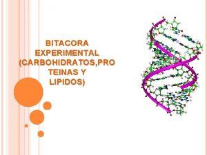 BITACORA EXPERIMENTAL CARBOHIDRATOS PRO TEINAS Y LIPIDOS INTRODUCCION
