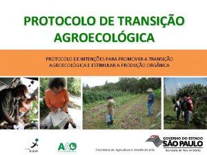 PROTOCOLO DE TRANSIO AGROECOLGICA PROTOCOLO DE INTENES PARA