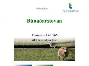 Rlvur Djurhuus Bnaarstovan Frammi Dal 166 410 Kollafjrur