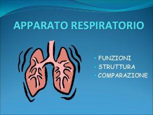 APPARATO RESPIRATORIO FUNZIONI STRUTTURA COMPARAZIONE FUNZIONI Assumere ossigeno