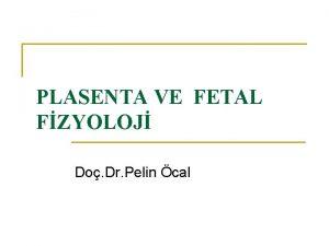 PLASENTA VE FETAL FZYOLOJ Do Dr Pelin cal