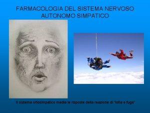FARMACOLOGIA DEL SISTEMA NERVOSO AUTONOMO SIMPATICO Il sistema