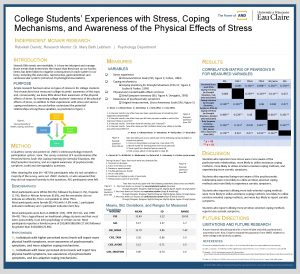 College Students Experiences with Stress Coping Mechanisms and
