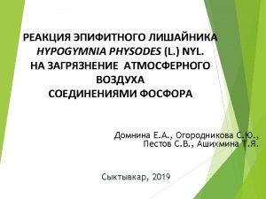 H physodes 4 9 2011 2012 2013 2014