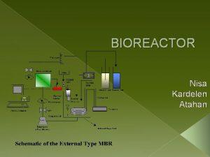 BIOREACTOR Nisa Kardelen Atahan Fermentation Fermentation is a