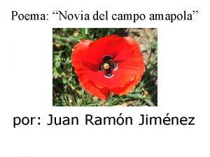 Poema Novia del campo amapola por Juan Ramn