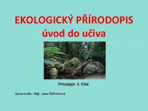 EKOLOGICK PRODOPIS vod do uiva Prodopis 6 tda