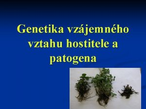 Genetika vzjemnho vztahu hostitele a patogena Genetika n