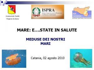 Assessorato Sanit Regione Siciliana MARE E STATE IN
