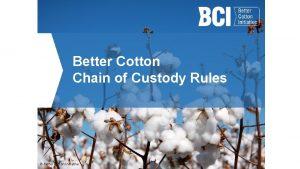 Better Cotton Chain of Custody Rules Better Cotton