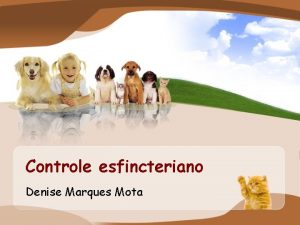 Controle esfincteriano Denise Marques Mota Controle esfincteriano Marco