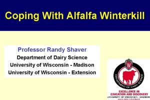 Coping With Alfalfa Winterkill Professor Randy Shaver Department