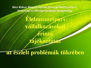 BcsKiskun Megyei Kormnyhivatal lelmiszerlncbiztonsgi s llategszsggyi Igazgatsg lelmiszeripari