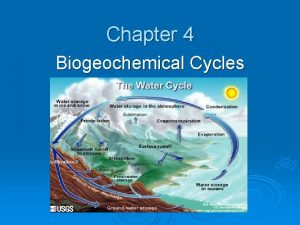 Chapter 4 Biogeochemical Cycles What IS a biogeochemical