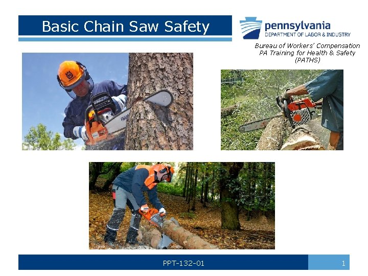 Basic Chain Saw Safety Bureau of Workers Compensation