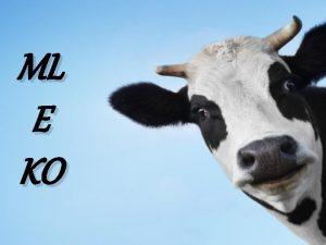 ML E KO Mleko mleku nierwne Najbardziej popularne