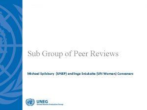 Sub Group of Peer Reviews Michael Spilsbury UNEP