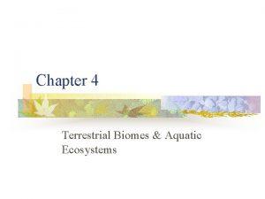 Chapter 4 Terrestrial Biomes Aquatic Ecosystems Terrestrial biomes