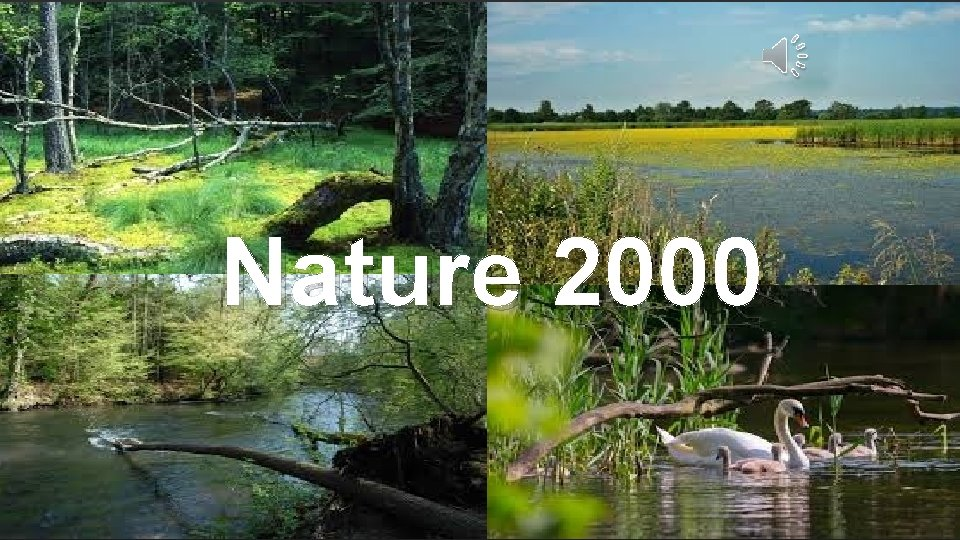 Nature 2000 Nature 2000 network program nature protection