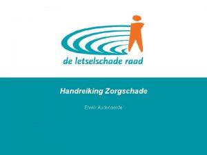 Handreiking Zorgschade Erwin Audenaerde 2009 De Letselschade Raad