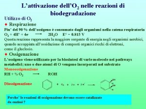 Lattivazione dellO 2 nelle reazioni di biodegradazione Utilizzo
