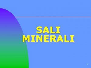 SALI MINERALI 1 Introduzione SONO I COSIDDETTI BIOELEMENTI
