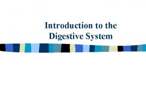 Introduction to the Digestive System Digestive System n