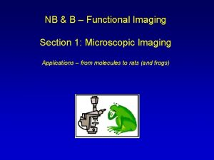 NB B Functional Imaging Section 1 Microscopic Imaging
