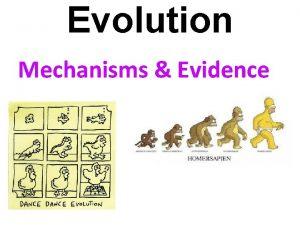 Evolution Mechanisms Evidence Mechanisms of Evolution Mutations are