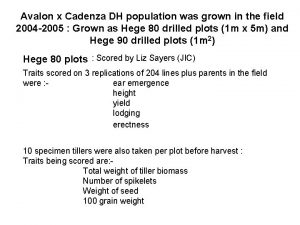 Avalon x Cadenza DH population was grown in