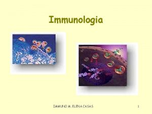 Immunologia IMMUNO M ELENA CASAS 1 Defenses organisme