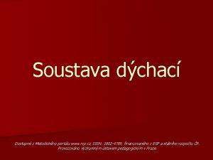 Soustava dchac Dostupn z Metodickho portlu www rvp