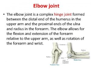 Elbow joint The elbow joint is a complex