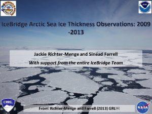 Ice Bridge Arctic Sea Ice Thickness Observations 2009