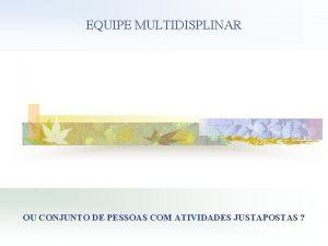 EQUIPE MULTIDISPLINAR OU CONJUNTO DE PESSOAS COM ATIVIDADES