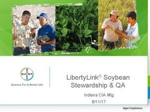 Liberty Link Soybean Stewardship QA Indiana CIA Mtg